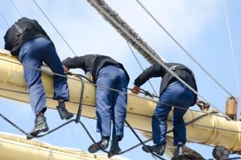 Ein Eckpfeiler des Erfolgs: Teamwork von Vertrieb und Marketing
